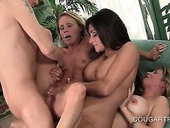 Orgasm Starved Cougars Having Hardcore Sex In Foursome