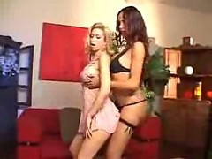 Crazy Shemale And Girl Oral And Hardcore