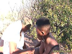 african safari threesome orgy