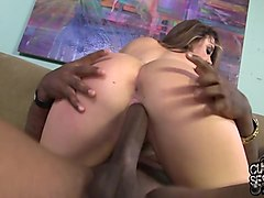 chanel preston sex movies xxx
