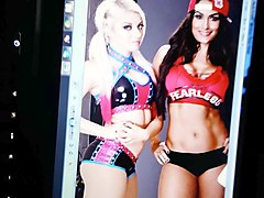 alexa bliss and nikki bella share the load
